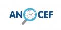 Association des Neuro-Oncologues d'Expression Française (ANOCEF)